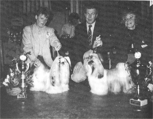 BOB/CLUBWINNAAR '94: Ysha T'san van het Martinihaim, P.Vlieghuis-Wijkstra (rechts)